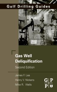 Gas Well Deliquification 2nd Edition PDF Free Download